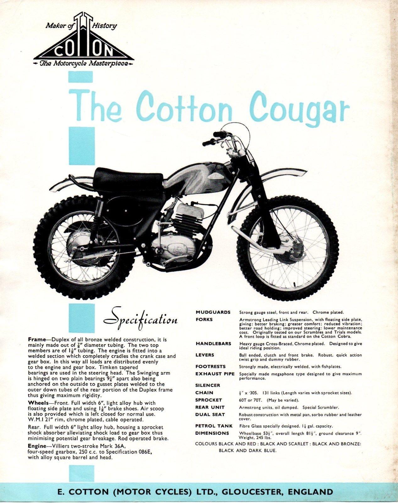 Cotton Cougar